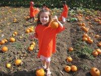 Camila's pumpkin